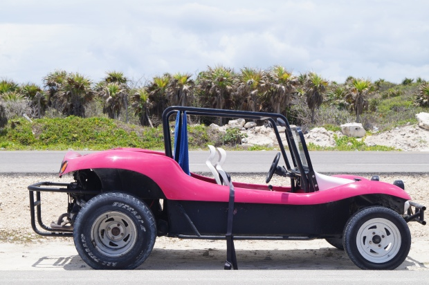 Pink Buggy!